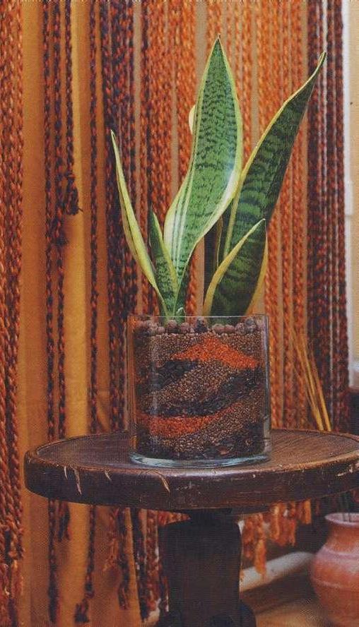 Стеклянный горшок для орхидеи купить - 897